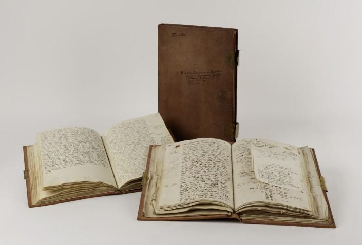 Alexander von Humboldt: Reisetagebücher